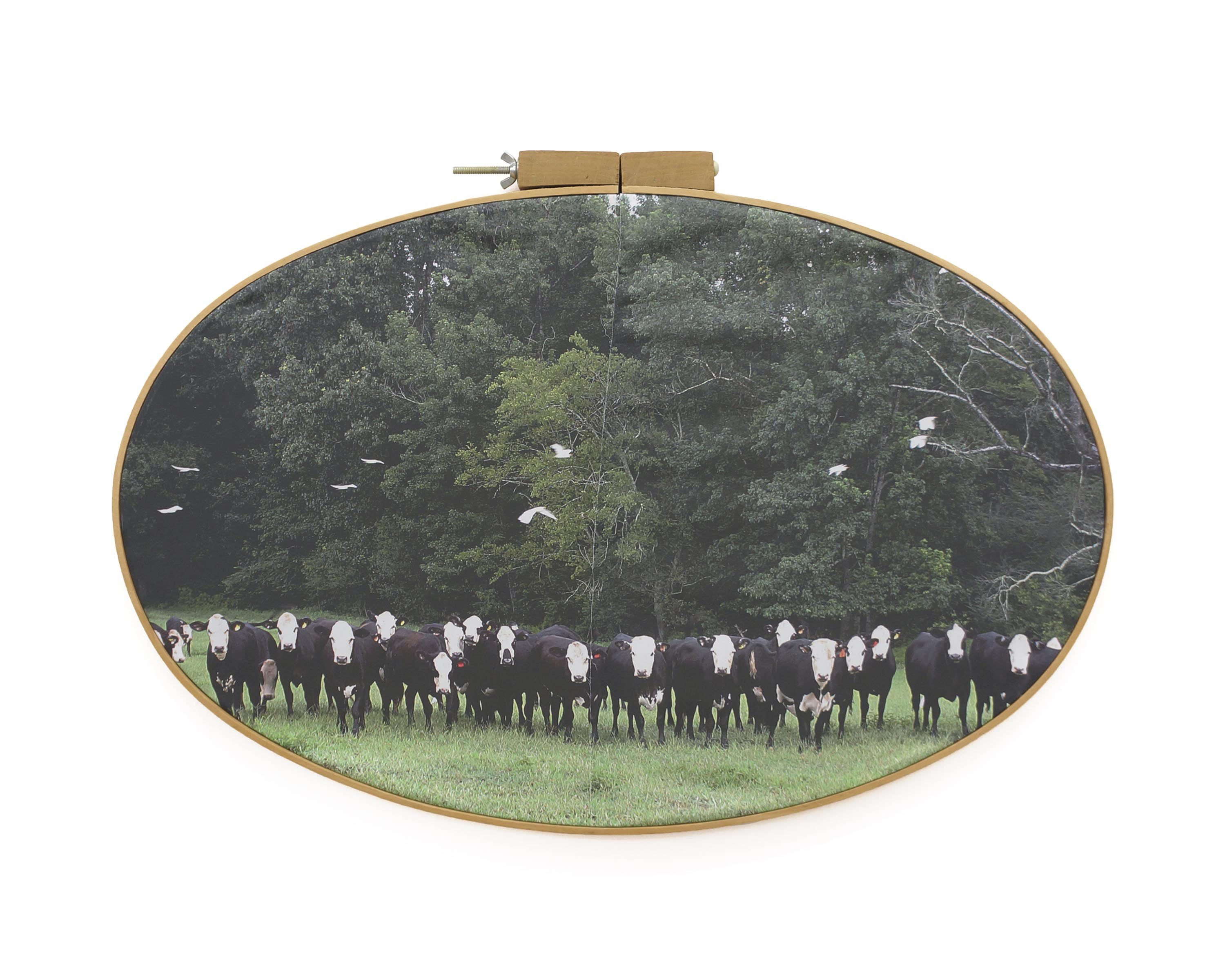 "Dixon Correctional Institute 2017 pigment print on fabric with vintage embroidery hoop 18 ½"" h x 27 ¼"" w"