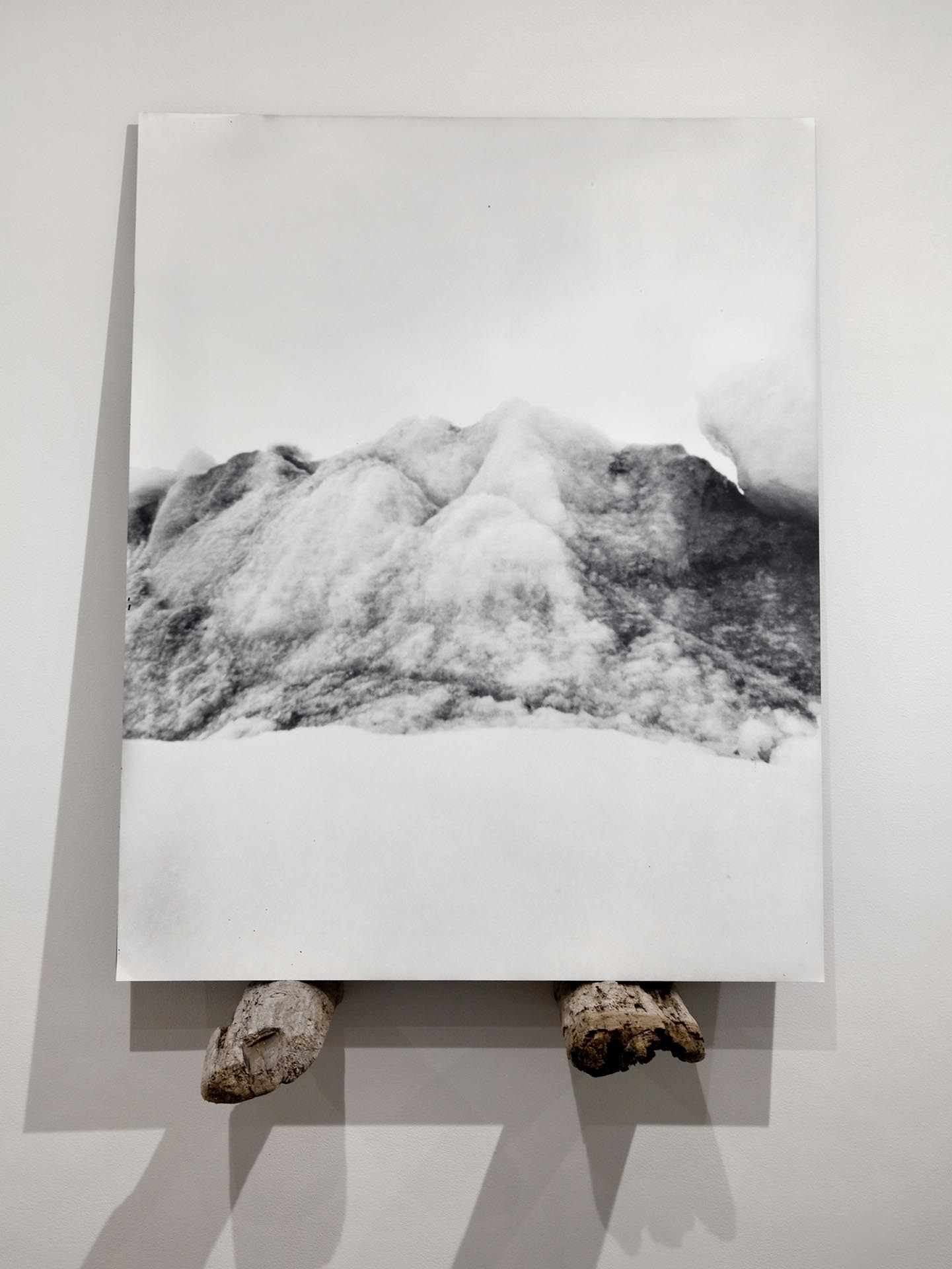 Vanessa Albury, Arctic, Future Relics (Glacial Ice), 2016, Selenium-toned Gelatin Silver Print mounted to museum board and wood, 32